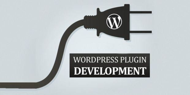 wordpress-plugin-development2