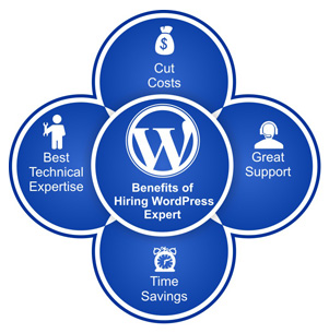 hire-wordpress-developer